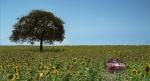 trailer_NR_20111130 2931